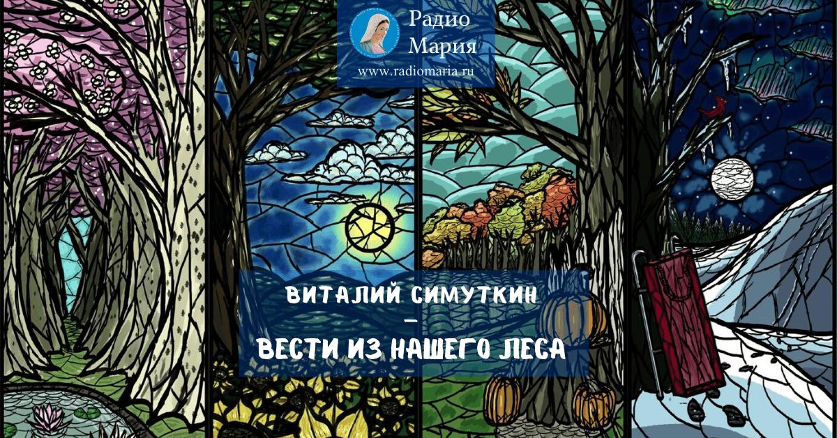 """Виталий Симуткин """"Вести из нашего леса"""""""